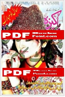 Download Pakeezah Digest January 2015 in PDF