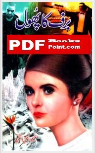 Baraf Ka Phool Urdu Novel by Aleem ul Haq Haqi