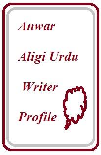 Anwar Aligi Urdu Writer Profile