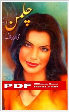Chilman Urdu Novel by Mohiuddin Nawab