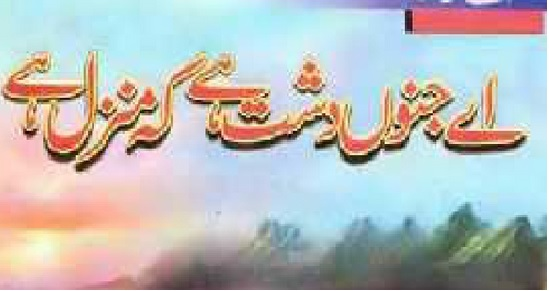 Aye Junno,n Dasht Hai k Manzil Hai Novel By Asia Mirza