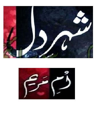 Shehr E Dil Urdu Novel By Umme Maryam