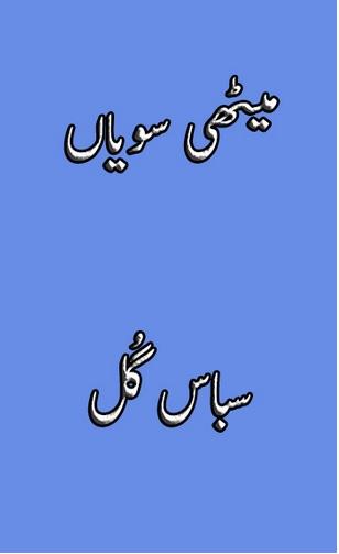 Methi Sawian Novel By Sabaas Gul