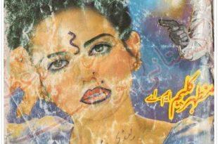 Lady Sunderta by Mazhar Kaleem M.A